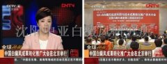 """CCTV4报道:""""分型分诊、多维治疗""""成果转化推广大会在北京举行"""
